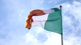 Flag of Ireland stock video