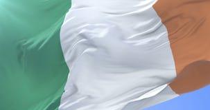Irish flag waving at wind in slow in blue sky, loop. Flag of Ireland waving at wind in slow in blue sky, loop stock footage