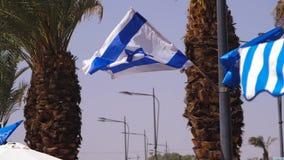 Flag of Israel on wind stock footage