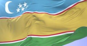 Flag of Karakalpakstan waving at wind with blue sky in slow, loop. Ed stock video