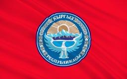 Flag of Kyrgyzstan royalty free illustration