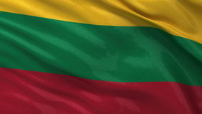 Flag of Lithuania - seamless loop Stock Images
