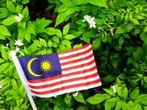 The flag of Malaysia on a natural background. Royalty Free Stock Photos