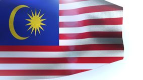 Flag of Malaysia waving in the wind stock video