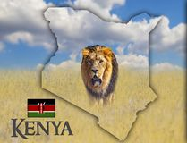 Flag Map of Kenya on which is a picture of a lion. There is the text of Kenya and flag. There is It is national african background. There is golden grass and stock photos