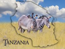 Flag Map of Tanzania on which is a picture of a zebras. There is the text of state. It is national african background with golden. Grass and blue sky. There is stock images