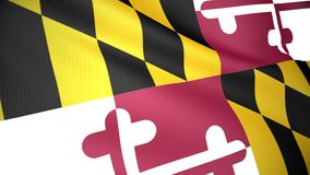 Flag of Maryland stock video