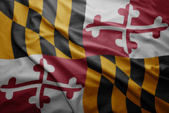 Flag of Maryland state Stock Photography