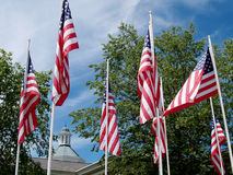 Flag Memorial. Several American flags at a Flag memorial site in Eastlake, Ohio.  Building tower and trees in the distance Royalty Free Stock Photo