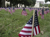 Flag Memorial to 9/11 Victims. Over 3,000 flags were planted on Sept 11th as a memorial to victims of the 9/11 terrorist attacks, at University of Texas in Stock Photo