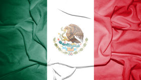 Flag of Mexico. Royalty Free Stock Images