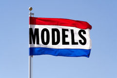 Flag modèle Photos stock