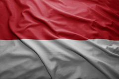 Flag of Monaco Stock Image