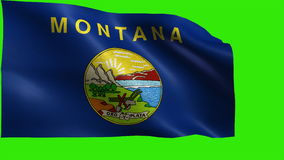Flag of Montana, MT, Helena, Billings, November 8 1889, State of The United States of America, USA state - LOOP. Beautiful 3d flag animation on green/blue screen stock video