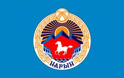 Flag of Naryn, Kyrgyzstan royalty free illustration