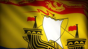 Flag of New Brunswick Royalty Free Stock Photography