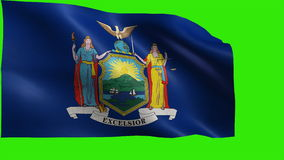 Flag of New York, NY, Albany, New York, July 26 1788, State of The United States of America, USA state - LOOP stock video