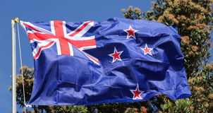 Flag of New Zealand. In sunlight Stock Photos