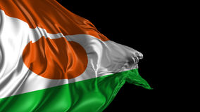 Flag of Niger stock video