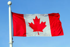 Free Flag Of Canada Royalty Free Stock Images - 21126499