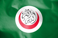 Flag of Organisation of Islamic Cooperation. 3d Rendered Flag of Organisation of Islamic Cooperation stock illustration
