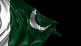 Flag of Pakistan royalty free illustration