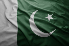 Flag of Pakistan Royalty Free Stock Photos