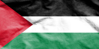 Flag of Palestine. Stock Images