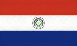 Flag of Paraguay Wall. Stock Photos
