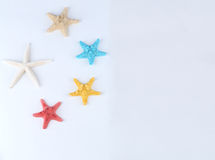 Flag of the People's Republic of China Starfish Stock Image