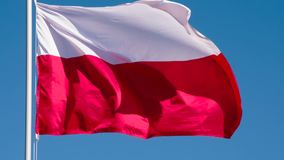Flag of Poland Fluttering in the Wind. The Big State Flag is illuminated by the sun and flutters epically in the wind against the blue sky. Slow Motion 120 fps stock footage