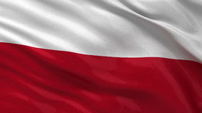 Flag of Poland - seamless loop stock video