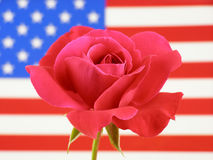 Flag and rose Stock Photography