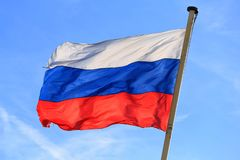 Flag of the Russian Federation. The national flag of the Russian Federation in the wind against a blue sky royalty free stock image