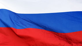 Flag of Russian Federation. Tricolor.  stock images