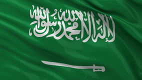 Flag of Saudi Arabia - seamless loop Royalty Free Stock Images