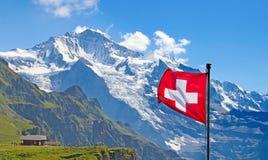 flag schweizare Arkivfoto