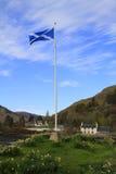 Flag of Scotland on the pol Stock Photos