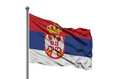 Flag of Serbia waving in the wind, isolated white background. Serbian flag stock image