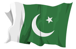 Flag series: Pakistan. Computer generated illustration of the flag of Pakistan Stock Images
