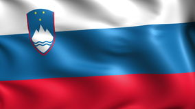 Flag of the Slovenia (loop) stock video