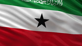 Flag of Somaliland seamless loop Stock Photos
