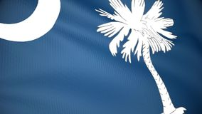 Flag of South Carolina. Looping video footage of a waving flag of the State of South Carolina (USA stock video