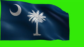 Flag of South Carolina, SC, Columbia, May 23 1788, State of The United States of America, USA state - LOOP stock video