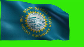 Flag of South Dakota, SD, Pierre, Sioux Falls, November 2 1889, State of The United States of America, USA state - LOOP stock video