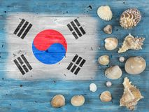 Flag of South Korea on a wooden background. Flag of South Korea painted on a wooden background royalty free stock photos
