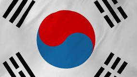 Flag of South Korea waving in the wind 2 in 1. South Korean flag waving in the wind seamless loop animation stock video