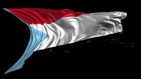 Flag of south Yemen stock video footage