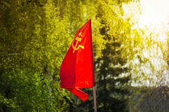 The flag of the Soviet Union develops on the background of green trees. Royalty Free Stock Photography
