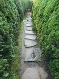 Stone path in a Japanese garden. Flag stone path between evergreen bushes in a traditional Japanese style garden Stock Photography